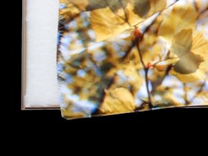 Akoestisch textielframe met zichtbare inhoud